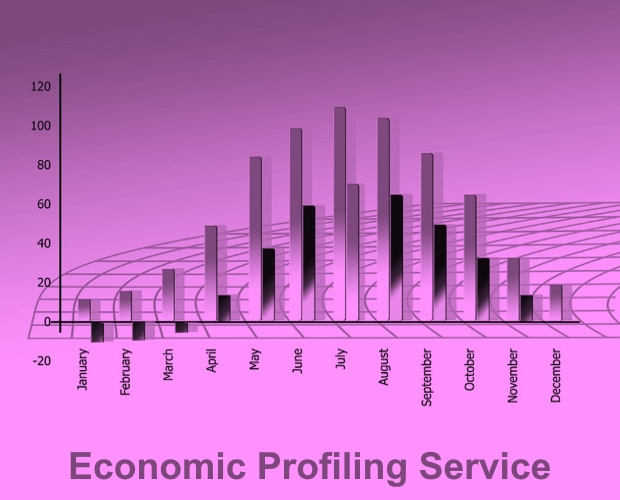 RSN Economic Profiling Service - Summer 2017