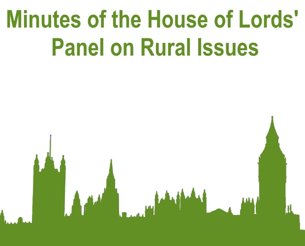 Minutes of the House of Lords' Panel on Rural Issues - 28/11/18