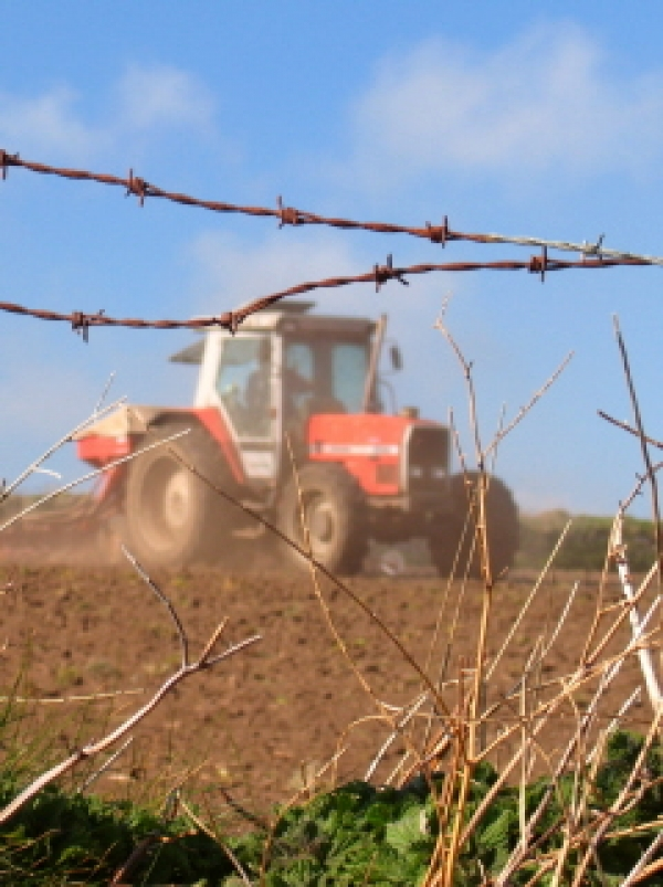 Rural economy 'faces further recession'