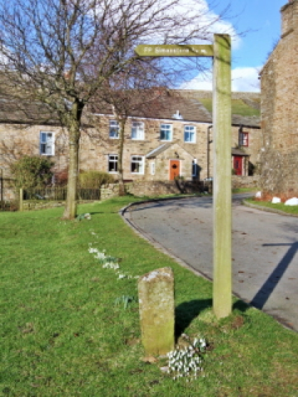 Controversy over village green plan